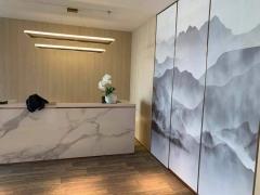 望京 绿地中心 精装办公 全套家具 企业直租 拎包入驻